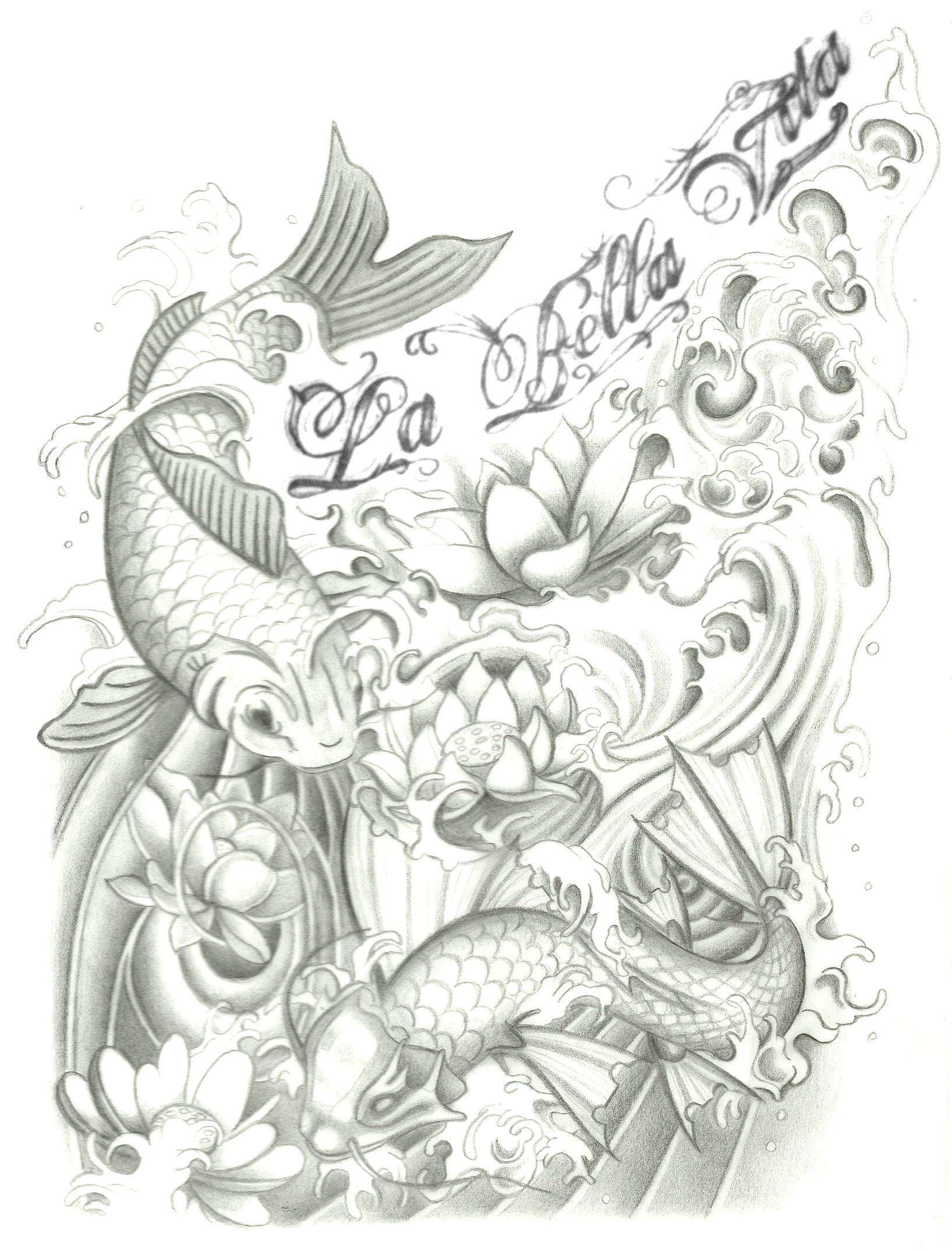Koi Fish With Lotus Drawings